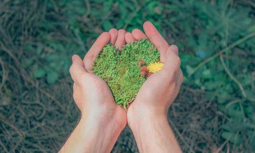 Curso básico de formación ambiental